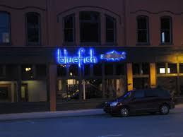 blue fish nightimages